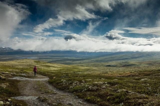 Kongevegen mellom Dovre og Fokstua Foto Matti Bernitz